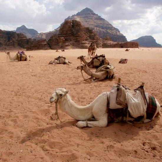 Giordania - Wadi Rum